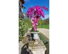 decoration exterieure vase medicis phalaenopsis