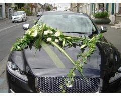decoration vehicule jaguar.JPG